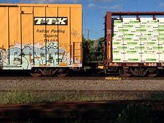 Batle (Archangel's Thunderbird) Tags: graffiti freight batle 663k batler benching batle663