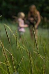 Look (Joanna pictures this) Tags: park green nature garden children botanical 50mm dof play bokeh natur garten kiel botanischer