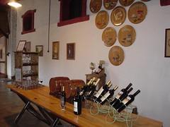 Wines in Mendoza, Argentina