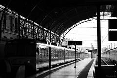 Estació de València (Rusinès) Tags: station valencia valència spain espanya train tren estació estación bw blancoynegro blackandwhite monochrome nikon d3200 kit 1855mm
