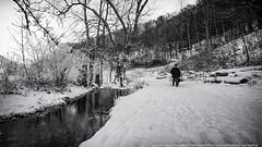 Wintertime - Art