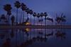 venice sunset reflection (sjg310) Tags: sunset clouds beach venicebeach california la losangeles nature landscape palmtrees reflection