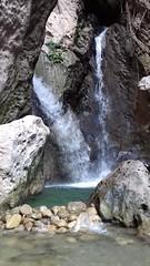 Cane River Falls, Jamaica (AdventuresfromElle) Tags: jamaica travel vacation traveljamaica wanderlust caneriver caneriverfalls bobmarley dreadlocks