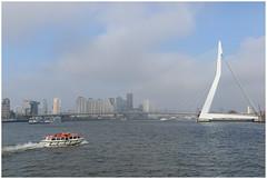 Erasmusbrug in Rotterdam op een mistige dag in februari 2017 .... (Martha de Jong-Lantink) Tags: 2017 erasmusbrug fotograferenmetdeplaatjesmakers plaatjesmakers rotterdam benvanberkel bijnaamdezwaan kopvanzuid nieuwemaas nederlandsepriesterenhumanisterasmus ontwerperbenvanberkel