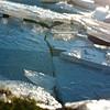 Ijs2 (yvetteverwer) Tags: hilversum bussum laren gooi light nature outdoor natuur landschap landscape winter ice ijs closeup cold frozen bevroren freeze