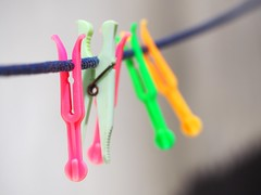 Feels Like Spring (Everything Colourful) Tags: pink color colour rainbow focus bright vivid depthoffield clip hanging grab grip peg clothespin lively clothespeg