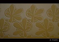 (PCB75) Tags: barcelona arquitectura modernism catalonia catalunya modernismo paret vegetal modernisme catalogna architecte modernista catalogne eixample passeigdegrcia fulles decoraci esgrafiat arquitecte estuc casalleimorera estucat 18501923 llusdommechimontaner