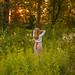 навсречу утру,солнцу,лесу DSC_7711