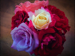 Stop--Keep cool and smell the roses (MissyPenny) Tags: flowers red roses usa pennsylvania lavender summertime bouquet southeasternpa commonwealthpa