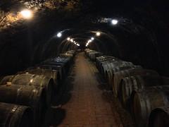 Cave à vin du vignoble Chateau Dereszla