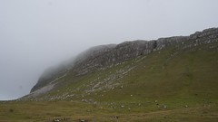 DSC01148 (mlcastle) Tags: faroeislands faroe froyar nlsoy