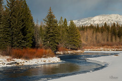 Snowy River (jpeder55) Tags: jackson xt2 cold fujifilm grandtetonnationalpark jpedersenphotography landscape nature winter wyoming