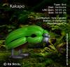 A-Z of Endangered Species – Kakapo (magirob) Tags: kakapo balloon balloons twist twisting bird wwf endangeredspecies endangered
