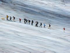 Iceberg Stroll © Arlene Solomon
