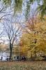 _DSC4036-HDR (purin_cess) Tags: centralpark 2016 autumn 11月 十一月 秋 中央公園 紐約 ny newyork