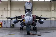 Jaguar (Kevin John Hughes) Tags: tornado jaguar aircraf raf rafcosford timeline timelineevents planes jets gulfwar lights cockpit