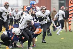 4D3A3048 (marcwalter1501) Tags: minotaure tigres strasbourg footballaméricain football sportdéquipe sport exterieur match nancy