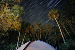 Bluefield Camping (Lance Camp) Tags: camping exploring florida bluefield ftpierce nikon d610 18mm vsco vscocam startrails astrophotography time lapse wide wideangle palm trees oak star nightlife primitivecamping tent earth wanderlust nikonflickraward