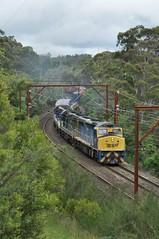 1845 blazing a trail through lush Leura (highplains68) Tags: aus australia nsw newsouthwales 1845 ssr grainforce train cclass leura c505 c509 c507