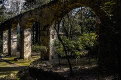 Ancient Columns (rodiann) Tags: rhodes rodi rhodos park rodini rodos greece grecia grece green trees column outdoor rocks