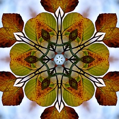 Kaleido Abstract 1569 (Lostash) Tags: art edited abstract patterns symmetry shapes kaleidoscopes