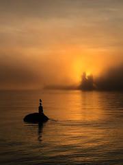 A certain air of Turner (rrestout) Tags: sculpture 222naturalphenomenon vancouver sunrise forest silhouette canada orange fog 309marinefeature sea woods