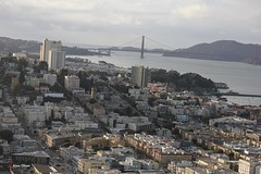 Coit Tower, 1 Telegraph Hill Blvd, San Francisco, CA 94133, USA (18) (alexanohan) Tags: coittower