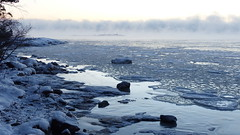 Sea smoke at -20°C (Kallahti, Helsinki, 20170106) (RainoL) Tags: 2017 201701 20170106 balticsea cold drottningen fin finland fz200 geo:lat=6018374887 geo:lon=2515138557 geotagged helsingfors helsinki ice january kallahdenniemi kallahti kallvik kallviksudden kuningatar nordsjö nyland sea seafog seasmoke seashore uusimaa winter vuosaari