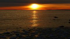 January sunset on the seashore (Lauttasaari, Helsinki, 20170122) (RainoL) Tags: 2017 201701 20170122 balticsea bluehour drumsö dusk fin finland fz200 geo:lat=6014445120 geo:lon=2487708090 geotagged helsingfors helsinki january lauttasaari nyland sea seashore sunset uusimaa winter goldenhour