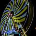 Ferris wheel in long exposure