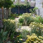 Hackney plant haven