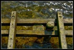 Seebrckendetail (Gelegenheitsknipser) Tags: strand deutschland sh ostsee 2009 schleswigholstein hohwacht norddeutschland seebrcke kreispln hohwachterbucht althohwacht pl mpfotonet gelegenheitsknipserde marcopagel