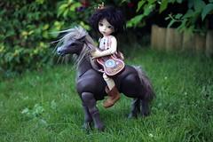 Tabby & Bullseye (Lucy-Loves?) Tags: horse doll tabby sage bullseye bjd fairyland tabitha anthro ante icantdance camelliadynasty littlefee