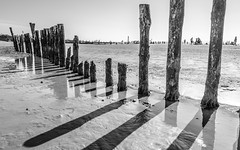 Stick To It - Explored (DobingDesign) Tags: wood uk shadow sea people blackandwhite sun reflection beach wet water lines silhouette skyline coast sticks sand stuck westsussex outdoor horizon shoreline diagonal shore column upright weatheredwood beams sunbathers chichester westwittering groynes seadefence southengland manhoodpeninsula