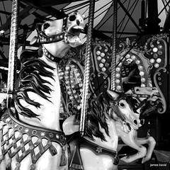 1-DSC_0681-002 (James Kaval) Tags: horse carousel august1 carouselhorse 2015 warrencountyfarmersfair jameskaval