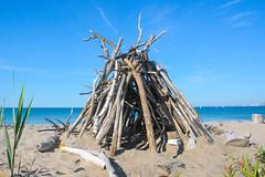 Beach Architecture (dunescape) Tags: driftwood torontoisland lakeontario