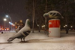 Snow-proof and Oversize Pigeon Art (beyondhue) Tags: pigeon art oversize snow park montcalm tache gatineau beyondhue quebec public canada installation winter three soup can campbell ottawa