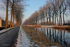 Damme (xplorengo) Tags: damme damsevaart bruges belgique belgium belgië belgie brugge brujas water canal kanaal trees bomen
