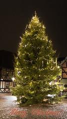 Merry Christmas everyone and HTT!! (lunaryuna) Tags: sweden malmo urban city seaason winter festiveseason christmas christmastree firtree illumination night nightlights beauty treemendoustuesday tree lunaryuna
