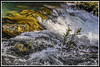 Rio Algar, aguas bravas (edomingo) Tags: edomingo nikond5000 nikkor18105 algar callosadensarrià alicante río cascadas costablanca
