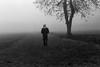 Walking through the fog (tercrossman87) Tags: canon 7 jupiter 8 kodak tmax 100 ilford ilfotec ddx 14 film home development epson v550 filmdev:recipe=11119 kodaktmax100 ilfordilfotecddx film:brand=kodak film:name=kodaktmax100 film:iso=100 developer:brand=ilford developer:name=ilfordilfotecddx