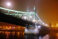 Liberty Bridge in Budapest, Hungary (` Toshio ') Tags: toshio budapest hungary libertybridge freedombridge bridge fog foggy danuberiver danube suspensionbridge water hungarian europe european europeanunion fujixe2 xe2 riverbank