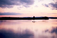 Lappbåt (Ulrika Eva Karolina) Tags: båt boat summer sommar sweden sverige kväll evening torneälv lappland norrland