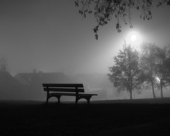 Mistyk bench (Ren-s) Tags: bench fog mist brume brouillard banc trees arbres light lumière grass weed herbe noiretblanc blackandwhite france clermontferrand europe night nuit leaves feuilles winter hiver street rue parc park auvergne