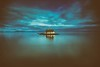 Blue Heart (Thomas Hawk) Tags: california chinacamp chinacampstatepark marin marincounty sanrafael sliceoftimesf usa unitedstates unitedstatesofamerica island fav10 fav25 fav50 fav100