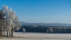 silence, no more no less (lactivitiez) Tags: winter wintertime ice licht blue trees saxony elbe lilienstein sunrise sun snow hike mood greatshot