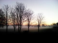 Fog at Hall Place,9 (doojohn701) Tags: fog sunset hall place bexley uk lampost road