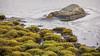 Uden titel (Jesper Krogh, DK) Tags: stone kalø sten landscape kaløvig landskab frost magical lake frozen