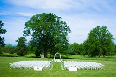 Steen Wedding site on west lawn
