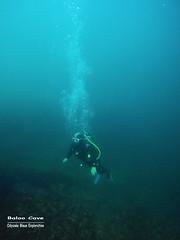 Baloo Cave (YellowSingle 单黄) Tags: baloo cave socoa scuba diving odyssée bleue plongée exploration atlantic ocean gopro sec